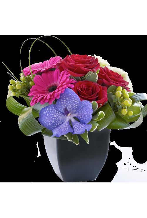Gerbera and Vanda Orchid Arrangement