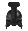 Gaiam Balance Ball Chair