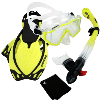 Dive Panoramic PURGE Mask
