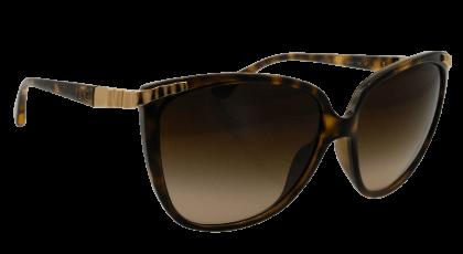 D&G DD8096 Sunglasses Havana