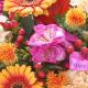 Happy Birthday Autumn Brights Globe