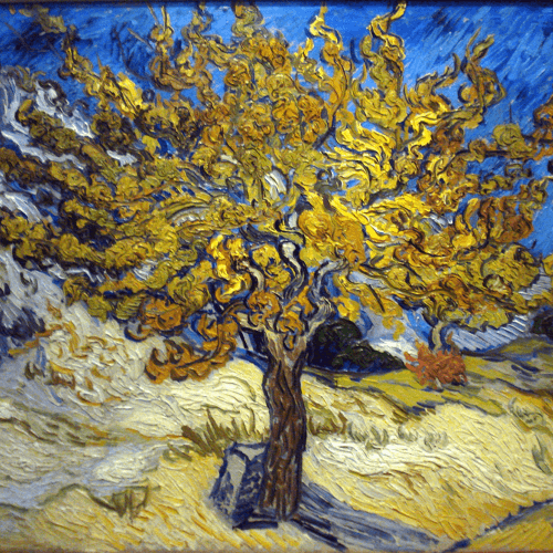 The Mulberry Tree Vincent Van Gogh