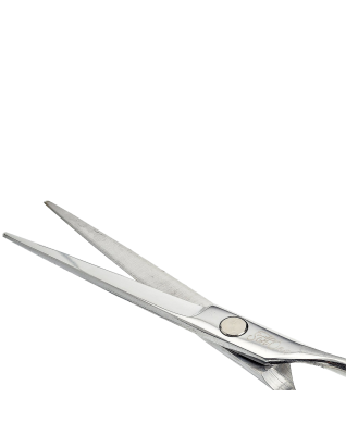 Schöne Professional Hair Cutting Scissors